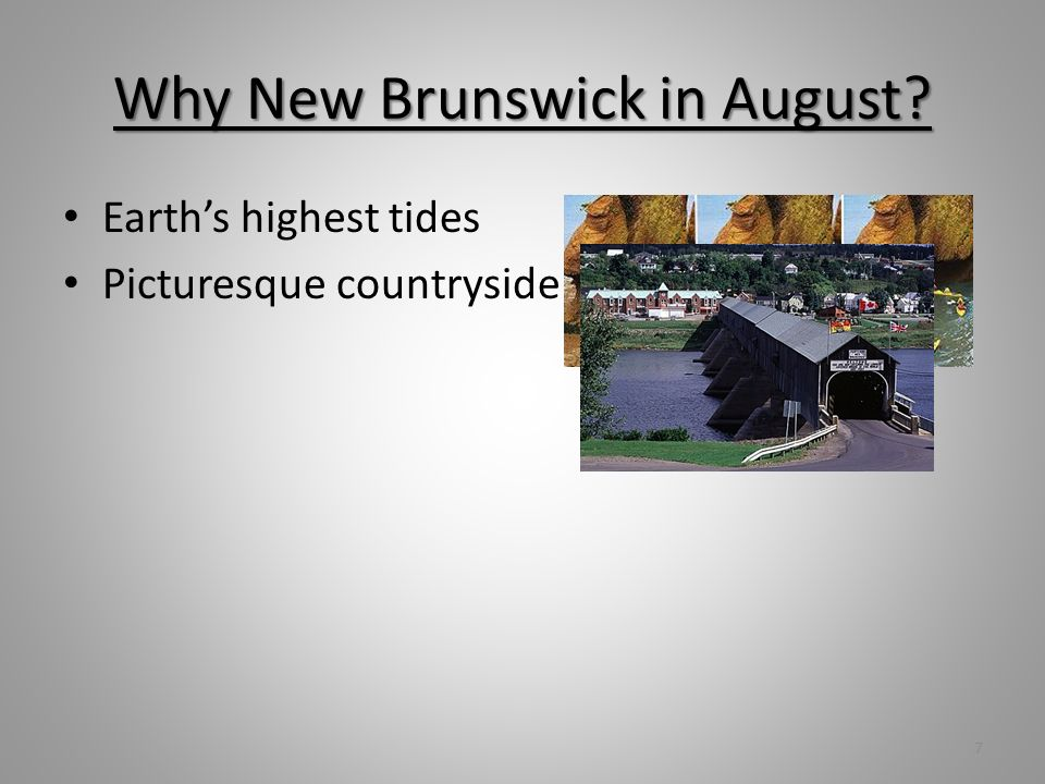 Why New Brunswick in August? Earths highest tides Picturesque countryside Great whale watching 8