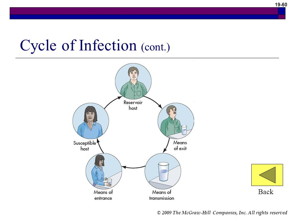 © 2009 The McGraw-Hill Companies, Inc. All rights reserved 19-60 Cycle of Infection (cont.) Back