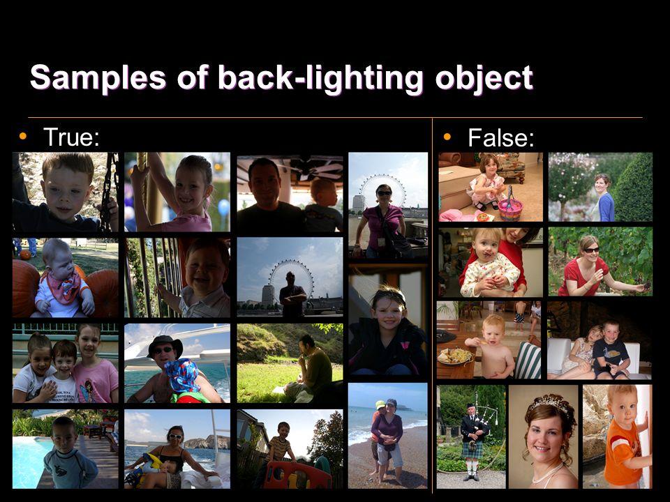 Back-lighting object True backlit human# PercentageFalse backlit human 1027.44%493 #: True backlit human images / Test Images Test Imagesdetected human imagePercentage 137059543.4%