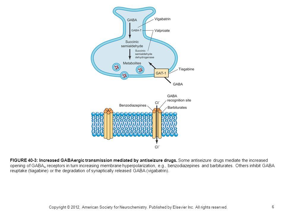 7 FIGURE 40-4: Antiseizure mediated reduction of I T.