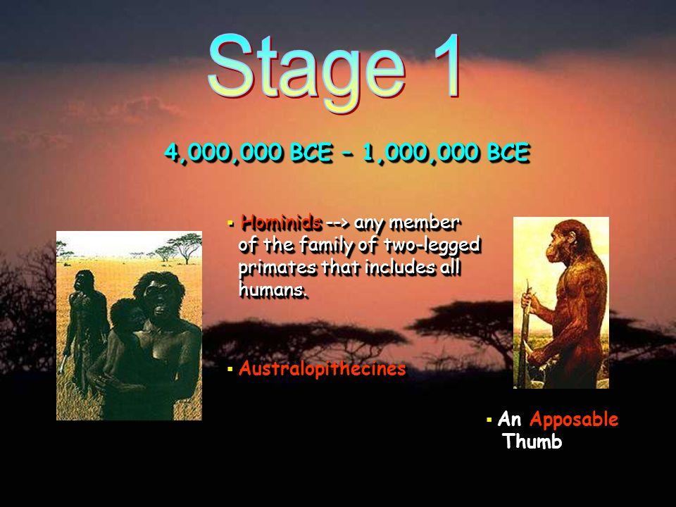 HOMO HABILIS ( Man of Skills ) HOMO HABILIS ( Man of Skills ) found in East Africa.