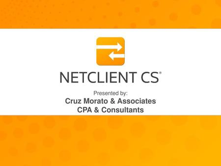 Secure Client Portals With NetClient CS secure portals, you can work with us anytime, from any high-speed Internet connection. It's as easy and secure.