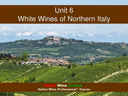White Wines of Northern Italy