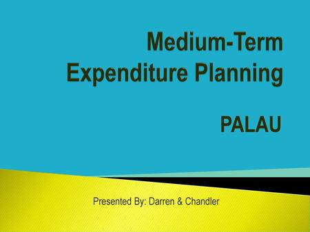 Medium-Term Expenditure Planning