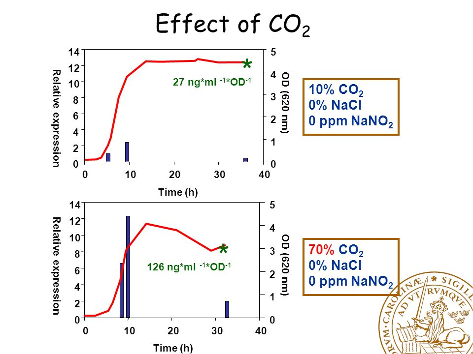 Effect of CO 2, NaCl and NaNO 2 Time (h) 0510152025303540 OD (620 nm) 0 1 2 3 4 5 Relative expression 0 2 4 6 8 10 12 14 10% CO 2 0% NaCl 0 ppm NaNO 2 27 ng*ml -1 *OD -1 * Time (h) 020406080100120 OD (620 nm) 0 1 2 3 4 5 Relative expression 0 2 4 6 8 10 12 14 70% CO 2 1.25% NaCl 75 ppm NaNO 2 154 ng*ml -1 *OD -1 *