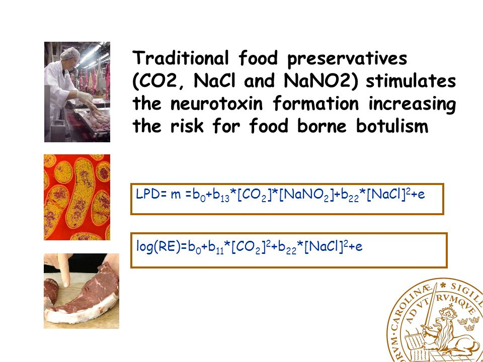 FOOD MICROB HUMAN Virulence expression a step towards formulating new strategies for food preservation, predictive modelling and risk assessment.