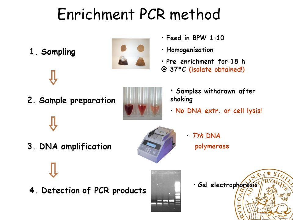 PCR Method Detection limit