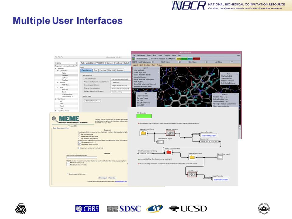 Condor poolSGE Cluster PBS Cluster Globus Application Services Opal GUIPMV/VisionKepler Big Picture Grid/Cloud Middleware