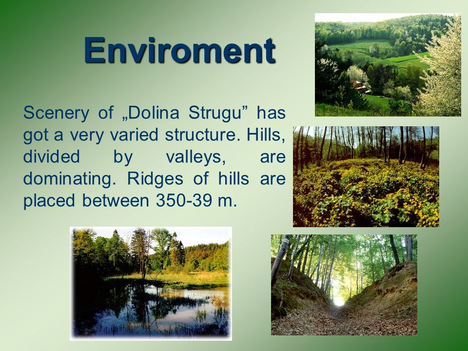 On the area of Dolina Strugu dominate springs, which mostly have very gainful white radiance.