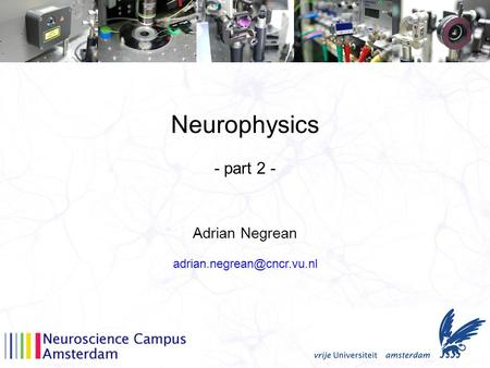 Neurophysics Adrian Negrean - part 2 -