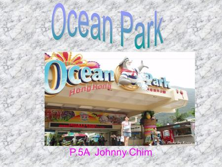 P.5A Johnny Chim. This is the map of Ocean Park These are pandas. They seem to Look! They are enjoy themselves. eating bamboos. They are so cute.