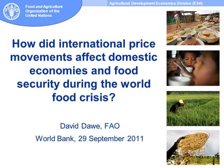 Agricultural Development Economics Division (ESA) Food and Agriculture Organization of the United Nations How did international price movements affect.