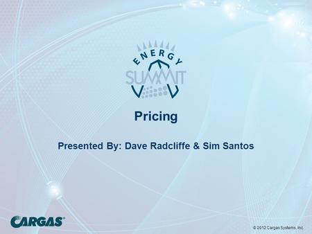 © 2012 Cargas Systems, Inc. Pricing Presented By: Dave Radcliffe & Sim Santos.