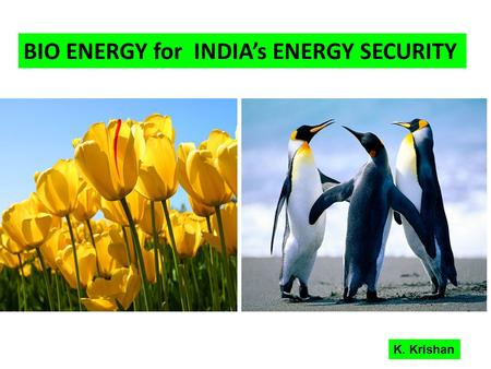 BIO ENERGY for <strong>INDIAs</strong> ENERGY SECURITY K. Krishan.