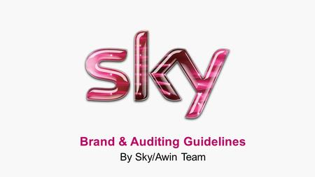 Brand & Auditing Guidelines