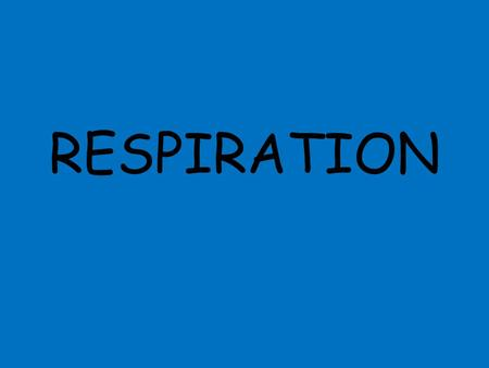 RESPIRATION. ACTIVITY 1 Write down as many terms as you can that are used to describe the respiratory system Bullet point your answers.