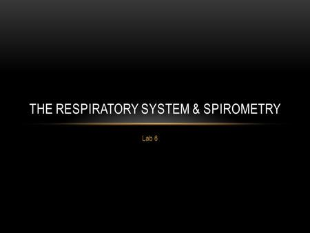 Lab 6 THE RESPIRATORY SYSTEM & SPIROMETRY. LAB 6 ACTIVITIES Identify parts of the respiratory system Respiratory tree, thoracic organs, and larynx models.