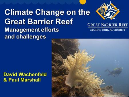 Climate Change on the Great Barrier Reef Management efforts and challenges David Wachenfeld & Paul Marshall.