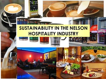 SUSTAINABILITY IN THE NELSON HOSPITALITY INDUSTRY.