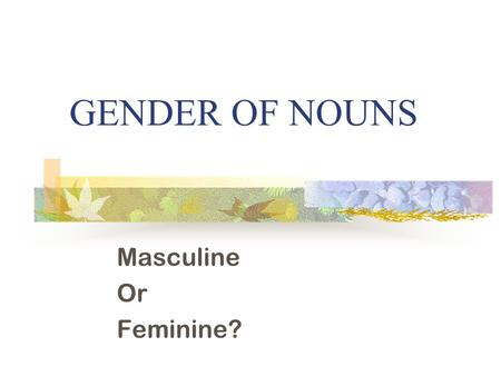 GENDER OF NOUNS Masculine Or Feminine?. What is a noun? A noun is … A person A place A thing.