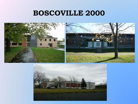 BOSCOVILLE 2000. MAPPING This project was realized in the summer of 2006 A total of 27 youth participated Mapping of youth resources in Rivière- des-Prairies.