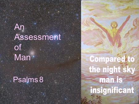 An Assessment of Man Psalms 8. What Are Human Beings? 1.Animal 2.Physico-chemical 3.Creature occupying space & time 4.Diverse life-form 5.Highest life-form.