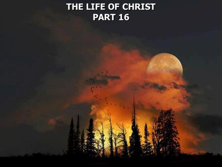 THE LIFE OF CHRIST PART 16 THE LIFE OF CHRIST PART 16.