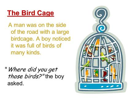 A man was on the side of the road with a large birdcage. A boy noticed it was full of birds of many kinds. The Bird Cage Where did you get those birds?