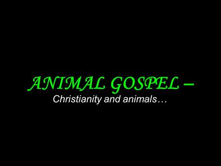 ANIMAL GOSPEL – Christianity and animals… Religion have a great influence on how we look at the world. It has even greater influence on the way our morality.
