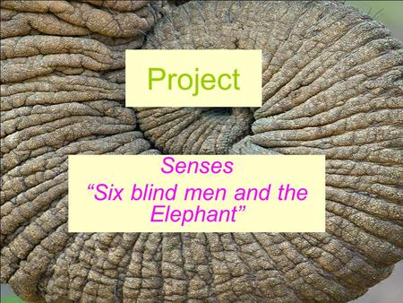 Project Senses Six blind men and the Elephant. Once upon a time there were six blind men. They lived in a town in India. They thought they were very clever.