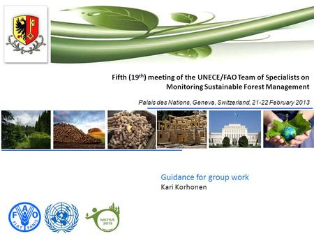 Fifth (19 th ) meeting of the UNECE/FAO Team of Specialists on Monitoring Sustainable Forest Management Palais des Nations, Geneva, Switzerland, 21-22.