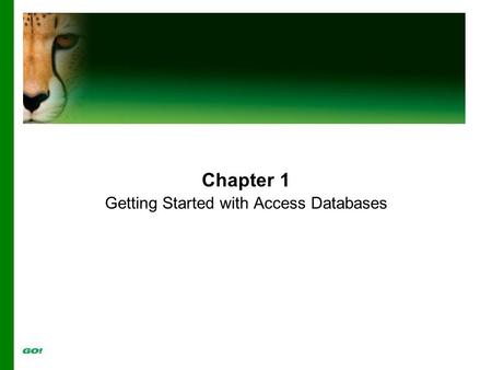 Chapter 1 Getting Started with Access Databases. Objectives Identify Good Database Design Create a Table and Define Fields in a New Blank Database Change.