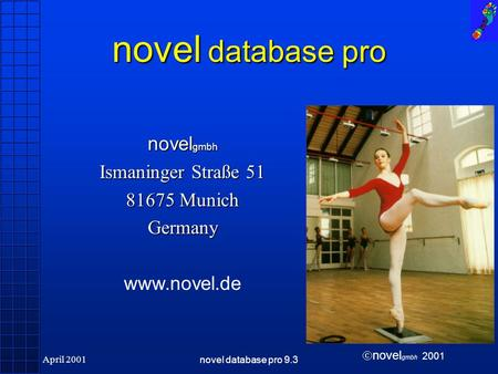Novel gmbh 2001 April 2001novel database pro 9.3 novel database pro novel gmbh Ismaninger Straße 51 81675 Munich Germany www.novel.de.