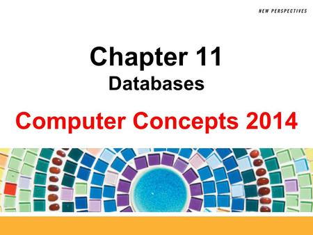 Chapter 11 Databases.