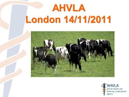 AHVLA London 14/11/2011. Confirmed Disease 2000-2008.