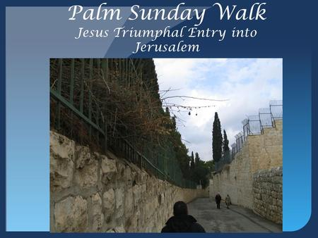Palm Sunday Walk Jesus Triumphal Entry into Jerusalem