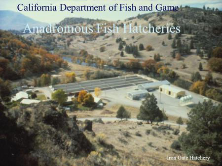 Iron Gate Hatchery California Department of Fish and Game Anadromous Fish Hatcheries.