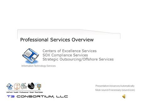 Professional Services Overview Centers of Excellence Services SOX Compliance Services Strategic Outsourcing/Offshore Services Information Technology Services.