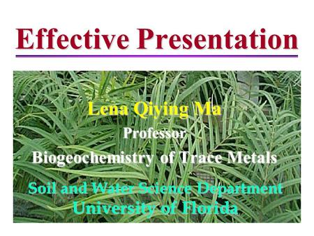Effective Presentation Lena Qiying Ma Professor Biogeochemistry of Trace Metals Soil and Water Science Department University of Florida.