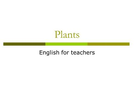 Plants English for teachers. Plants: Garlic Plants: Bean seed pod.