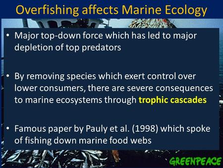 Overfishing affects Marine Ecology Major top-down force which has led to major depletion of top predators By removing species which exert control over.