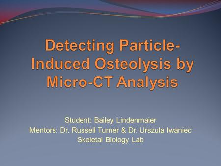 Detecting Particle-Induced Osteolysis by Micro-CT Analysis