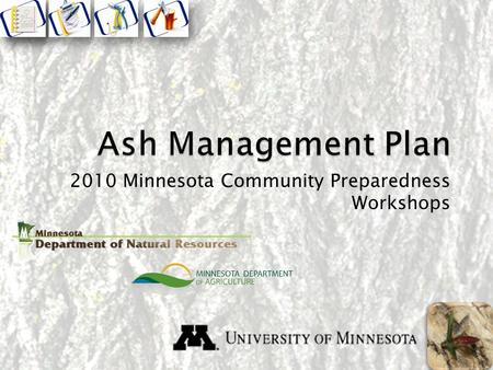 2010 Minnesota Community Preparedness Workshops. Components Ash Tree Inventory and Assessment Ash Tree Removals Wood Utilization Tree Replacement Insecticide.