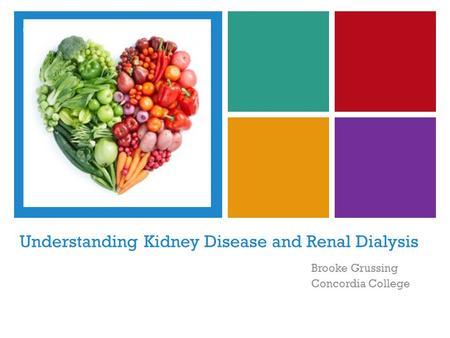 + Understanding Kidney Disease and Renal Dialysis Brooke Grussing Concordia College.