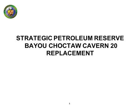 STRATEGIC PETROLEUM RESERVE BAYOU CHOCTAW CAVERN 20 REPLACEMENT 1.