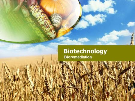 Biotechnology Bioremediation.
