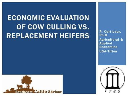 R. Curt Lacy, Ph.D Agricultural & Applied Economics UGA-Tifton ECONOMIC EVALUATION OF COW CULLING VS. REPLACEMENT HEIFERS.