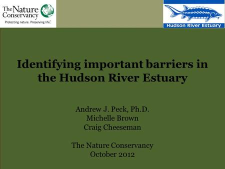 Identifying important barriers in the Hudson River Estuary Andrew J. Peck, Ph.D. Michelle Brown Craig Cheeseman The Nature Conservancy October 2012.