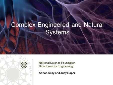 Complex Engineered and Natural Systems