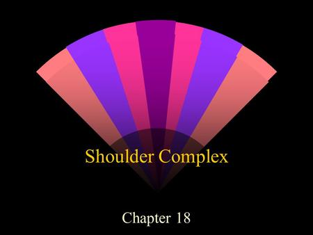 Shoulder Complex Chapter 18. Shoulder Anatomy w Clavicle w Scapula w Humerus w Articulations: Sternoclavicular joint Acromioclavicular joint Glenohumeral.